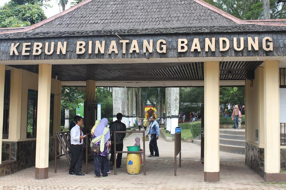 kebun-binatang-bandung-zoo