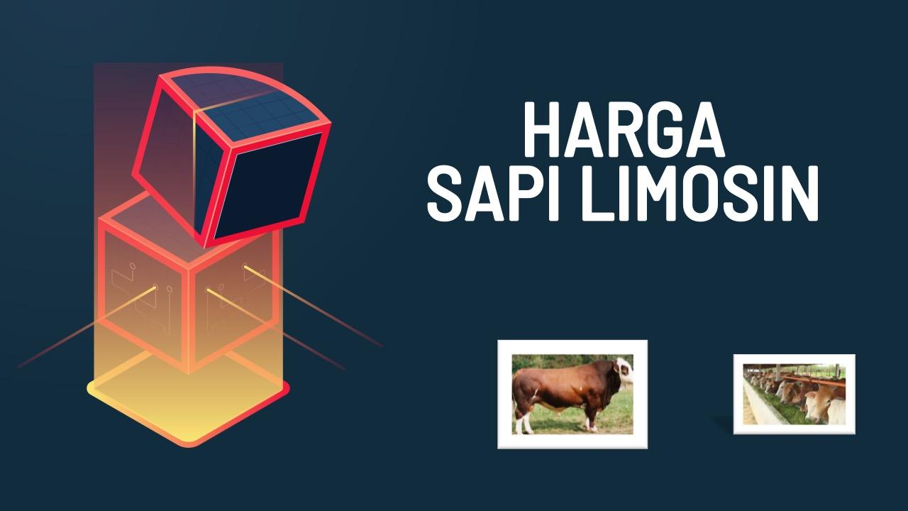 harga-sapi-limosin